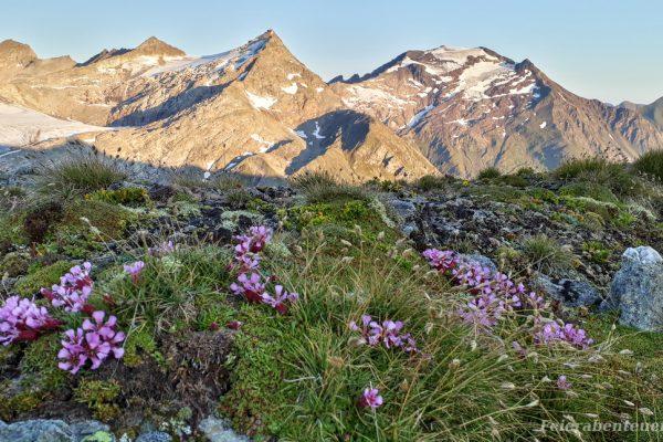 Ein 4-tägiges Abenteuer durch den Nationalpark Hohe Tauern, eine Biwaktour von Mallnitz über zwei 3000er nach Rauris
